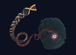 Interesting Times in RNA Sequencing
