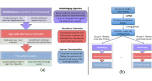 Shannon – An Information-Optimal de Novo RNA-Seq Assembler