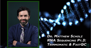 RNA Sequencing workshop – Trimmomatic and FastQC