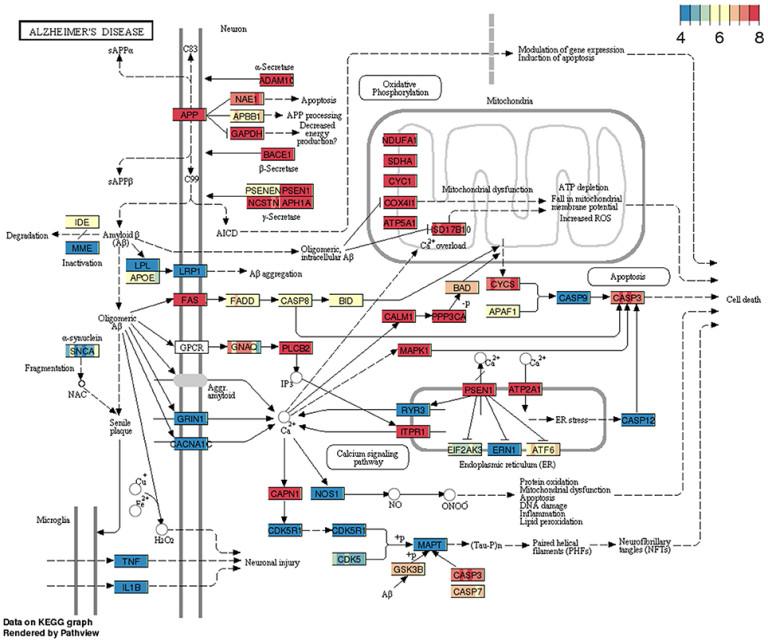 BBBomics – Human Blood Brain Barrier Transcriptomics Hub