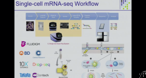 Algorithms for Single Cell RNA-Seq Analysis