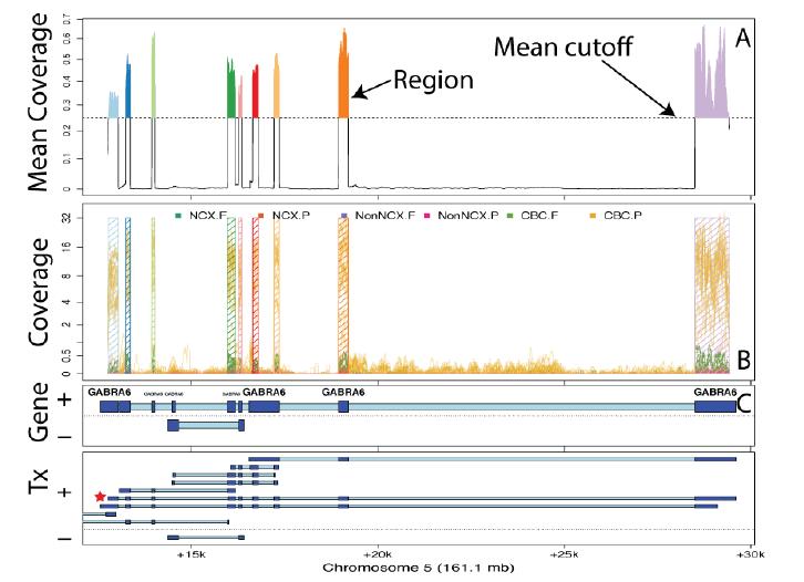 Flexible expressed region analysis for RNA-seq with derfinder