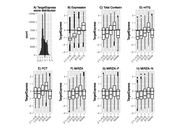 Improving microRNA target prediction with gene expression profiles