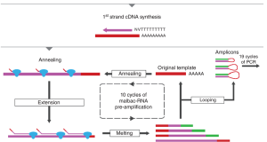 RNA-Seq methods for transcriptome analysis