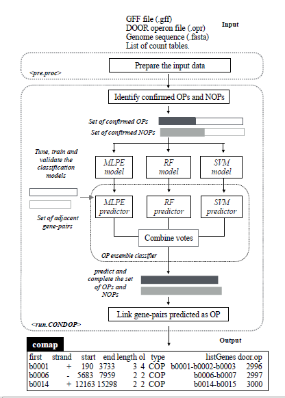 CONDOP – an R package for CONdition-Dependent Operon Predictions