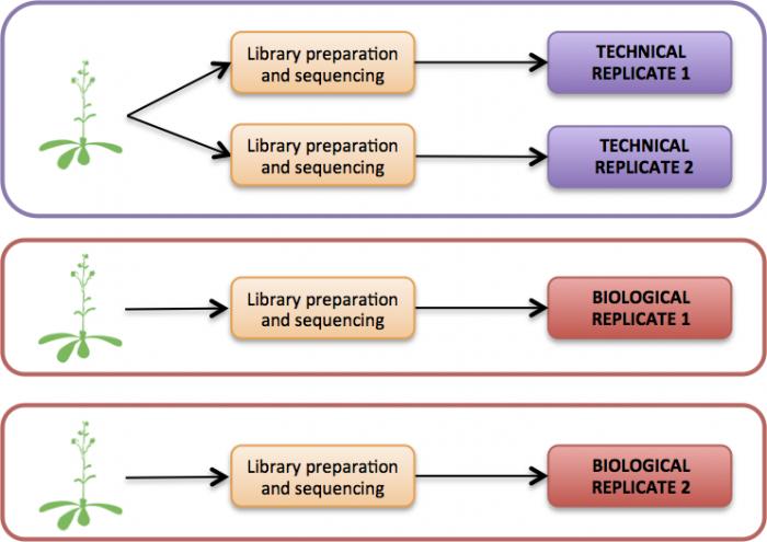 EMBL-EBI Train Online Course – RNA Sequencing