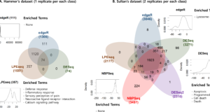 LPEseq – accurately test differential expression with a limited number of replicates