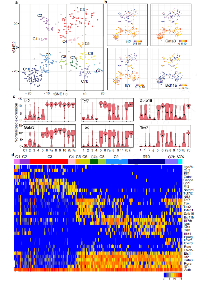 First Example Of Using Single Cell Rna Sequencing To Find