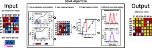 GSVA – gene set variation analysis for microarray and RNA-Seq data