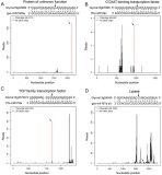 The Latest RNA-Seq Application – Degradome Sequencing