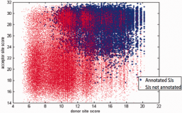 UnSplicer: mapping spliced RNA-seq reads in compact genomes and filtering noisy splicing