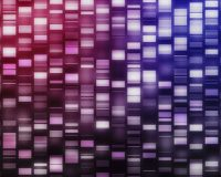 The Future of Next-Gen Sequencing