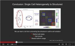Single-cell RNA-seq reveals dynamic paracrine control of cellular variation