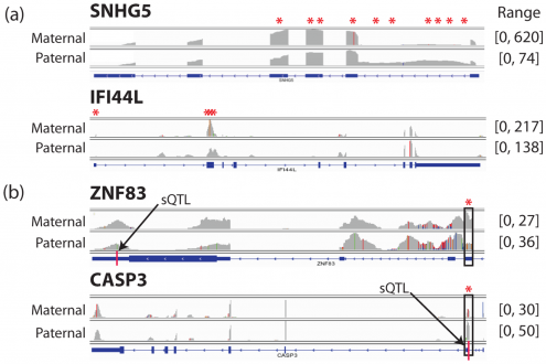 High-Resolution Transcriptome Analysis with Long-Read RNA Sequencing