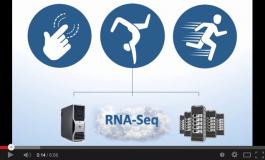 RNA-Seq Analysis with Partek Flow Software