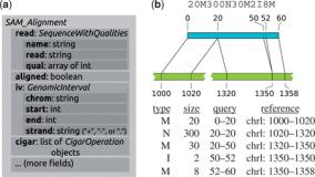 HTSeq – a Python framework to work with high-throughput sequencing data