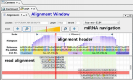 miRseqViewer – Multi-panel visualization of sequence, structure and expression for analysis of microRNA sequencing data