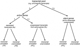 A comparative study of RNA-seq analysis strategies