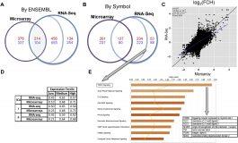 Comparison of atopic dermatitis transcriptome profiling by microarray and RNA-Seq