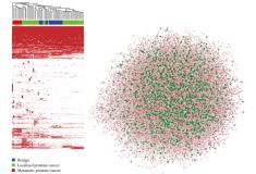 Predicting the Functions of Long Noncoding RNAs Using RNA-Seq