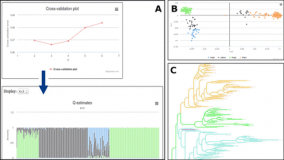 SNiPlay3 – a web-based application for exploration and large scale analyses of genomic variations