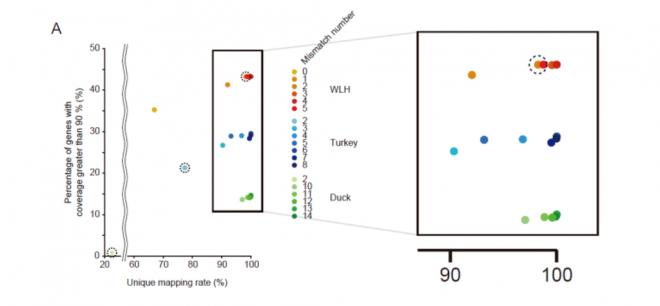 Pseudo-Reference-Based Assembly of Vertebrate Transcriptomes