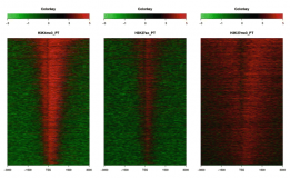 Analysis and Visualization of ChIP-Seq and RNA-Seq Sequence Alignments Using ngs.plot