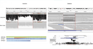 Long-read sequencing of the transcriptome reveals novel spliced genes that are not annotated in GENCODE and are missed by short-read RNA-Seq