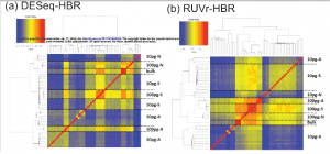 Assessment of single cell RNA-seq normalization methods
