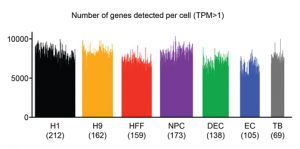 Single-cell RNA-seq reveals novel regulators of human embryonic stem cell differentiation