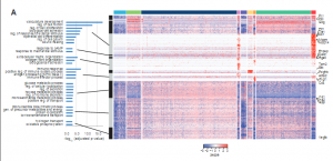 End Sequence Analysis ToolKit (ESAT) – a computational pipeline for single cell RNA-seq experiments