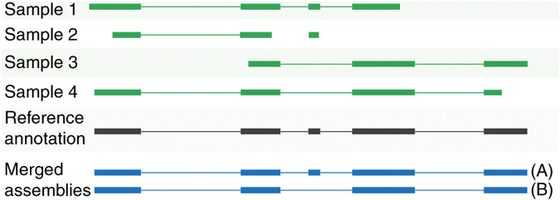 Transcript-level expression analysis of RNA-seq experiments with HISAT, StringTie and Ballgown
