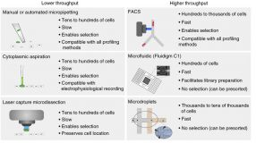 Experimental approaches commonly used for single-cell gene expression profiling