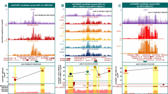 Mapping eQTLs With RNA-Seq reveals a more comprehensive set of eQTLs and illuminates underlying molecular consequence missed by microarrays