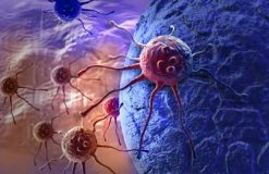 RNA-Seq as a Tool to Study the Tumor Microenvironment