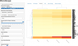 MicroScope – ChIP-seq and RNA-seq software analysis suite for gene expression heatmaps