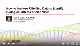 Webinar – How to Analyze RNA Seq Data to Identify Biological Affects of Zika Virus
