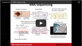 Introduction to RNA Sequencing