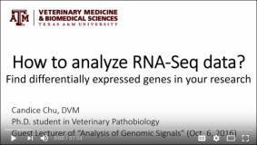 How to Analyze RNA-Seq Data?