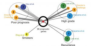 Development of a RNA-Seq Based Prognostic Signature for Lung Cancer