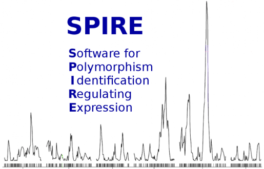 SPIRE – a modular pipeline for eQTL analysis of RNA-Seq data