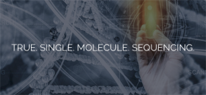 SeqLL Launches Early Access Program for New true Single Molecule Sequencing (tSMS™) Benchtop System