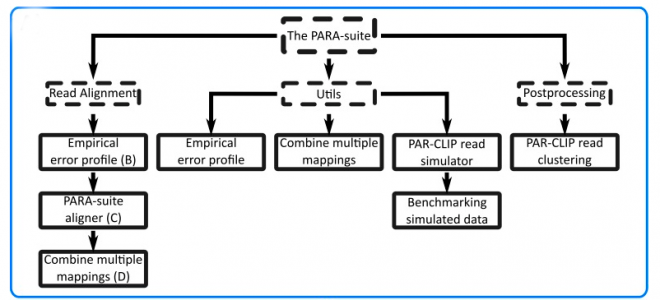 The PARA-suite – PAR-CLIP specific sequence read simulation and processing