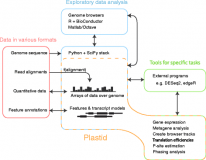 Plastid – nucleotide-resolution analysis of next-generation sequencing and genomics data