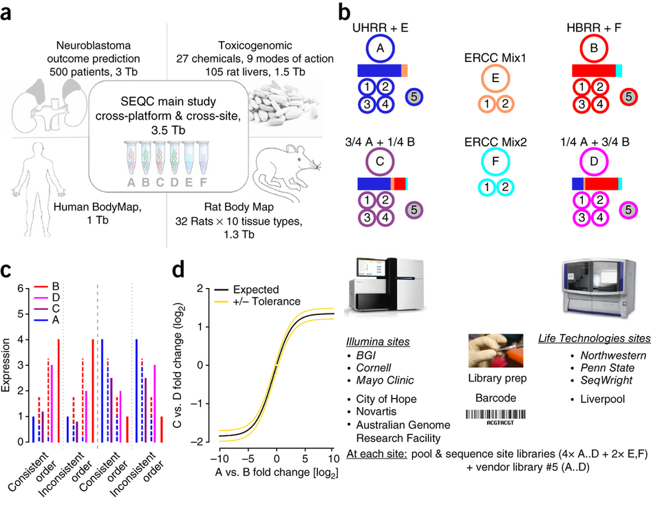 Study Finds Rna Seq Like Microarrays Only Accurate For