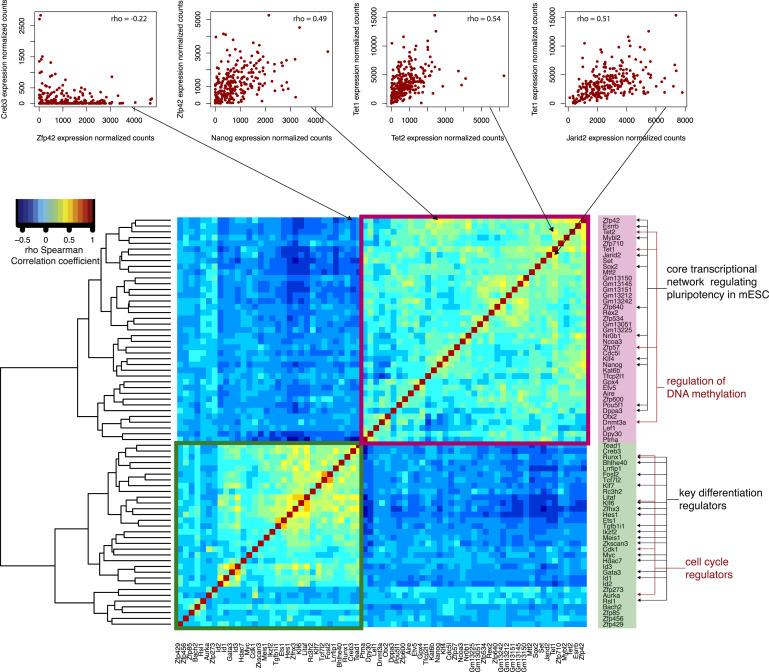 A Snapshot Of Stem Cell Expression Rna Seq Blog