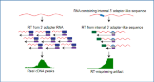 rna-seq